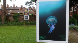 Last chance to see British Wildlife Photography Awards Exhibition