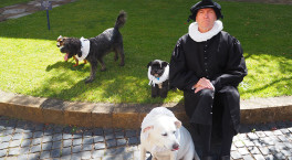 It's a dog's life at Shakespeare's Schoolroom & Guildhall