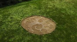 Natural artwork created in Avon Meadows