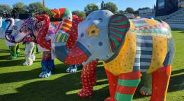 Worcester's Big Parade auction raises £368,800 for St Richard's Hospice