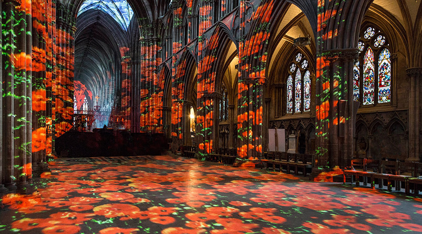Immersive projection Poppy Fields returns to Lichfield Cathedral this November