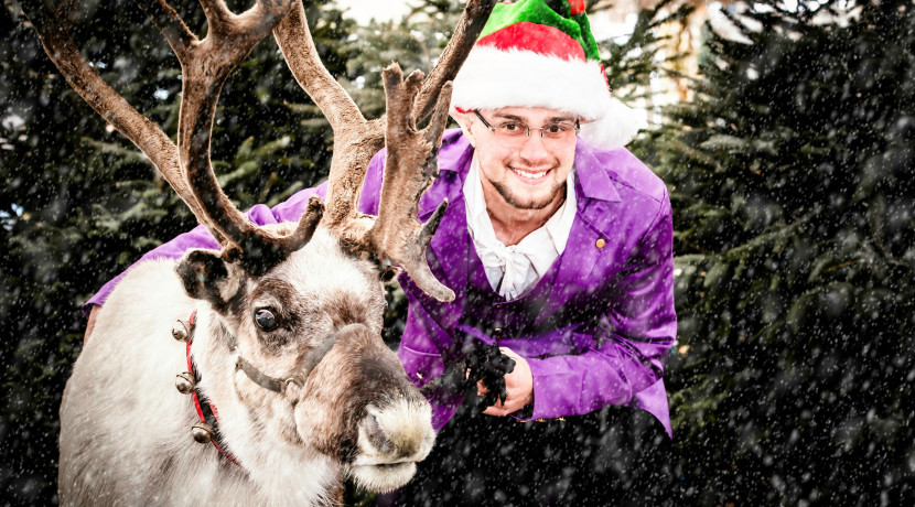 Family festive fun announced at Staffordshire farm attraction