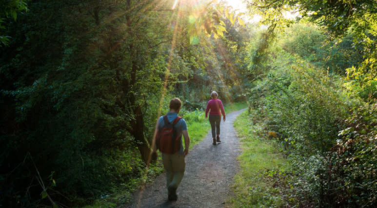 National Forest Way challenge walk aiming to raise charity funds
