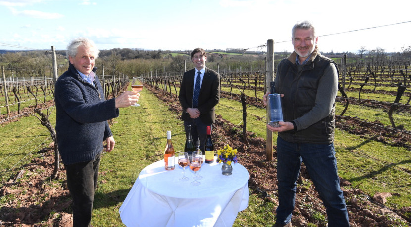 Renowned Worcestershire vineyard hits the market
