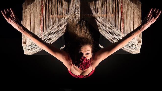 Mi Flamenco