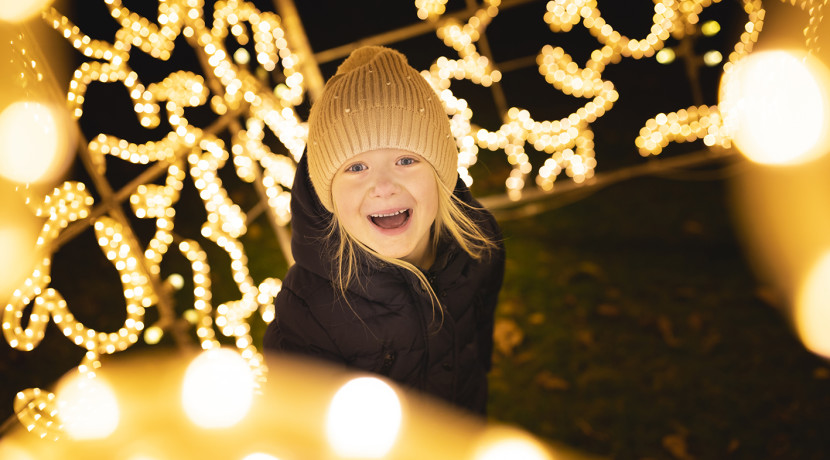 Trentham set to be transformed into Christmas light trail