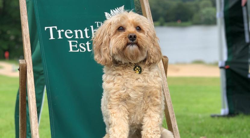 Trentham Estate launches Dog Membership