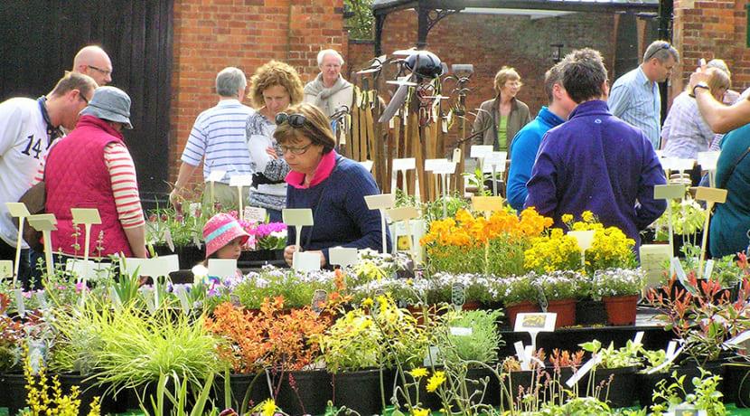 Plant Hunters' Fair