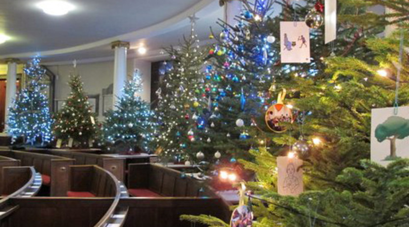 The Christmas Tree Festival is back for 2019