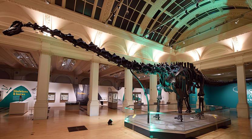 Birmingham Museum & Art Gallery celebrates boost in visitor figures