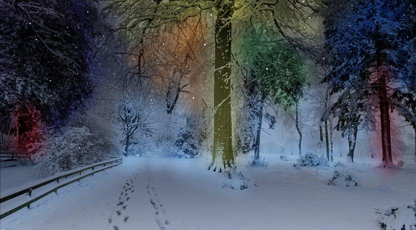 Winter Fairy Magic Casts its Spell on Weston Park