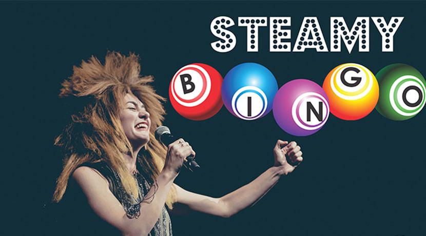 Tina T'urner Tea Lady's Steamy Bingo