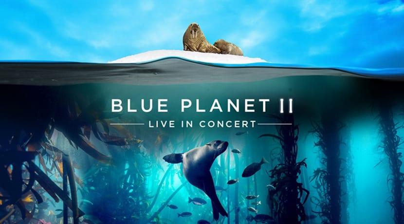 Blue Planet review