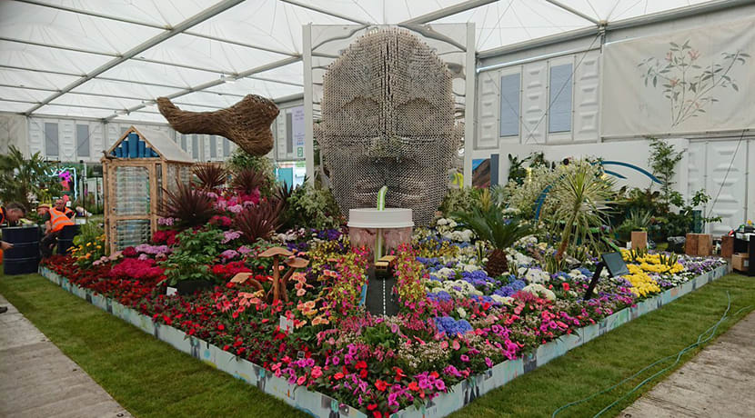 Birmingham wins eighth Gold at RHS Chelsea Flower Show 2019