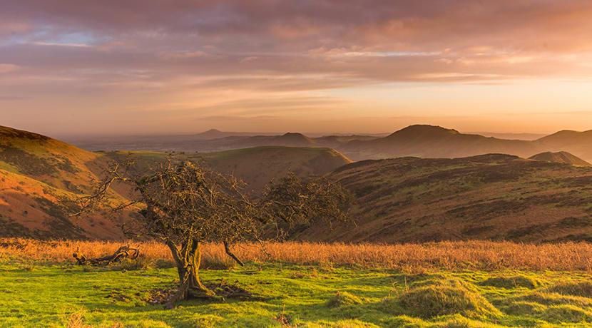 September on the Long Mynd – a photographer's paradise!