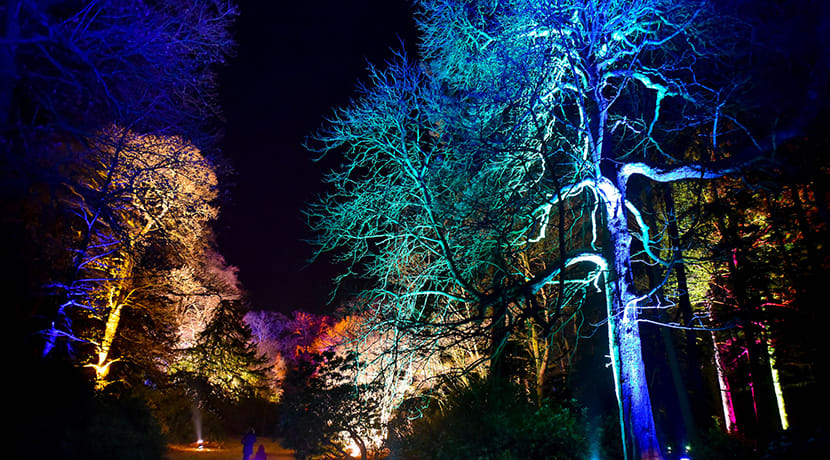 Weston Park set to enchant this winter