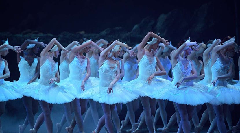 English National Ballet streaming Swan Lake for free until tomorrow night