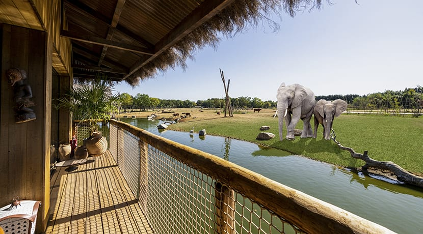 Bookings for West Midland Safari Park lodges now open