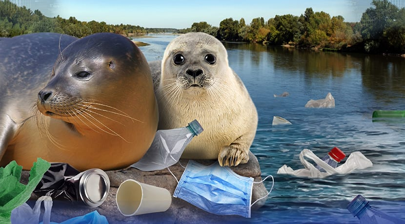 SEA LIFE launches Don't Make Easter Rubbish! campaign