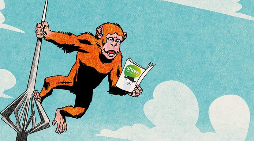 Comics Salopia top picks