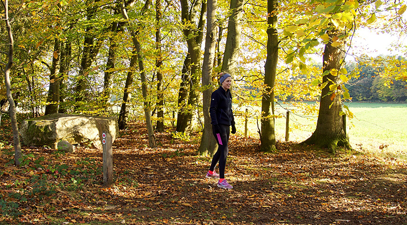 National Trust woodland near Bridgnorth to host 10k trail run