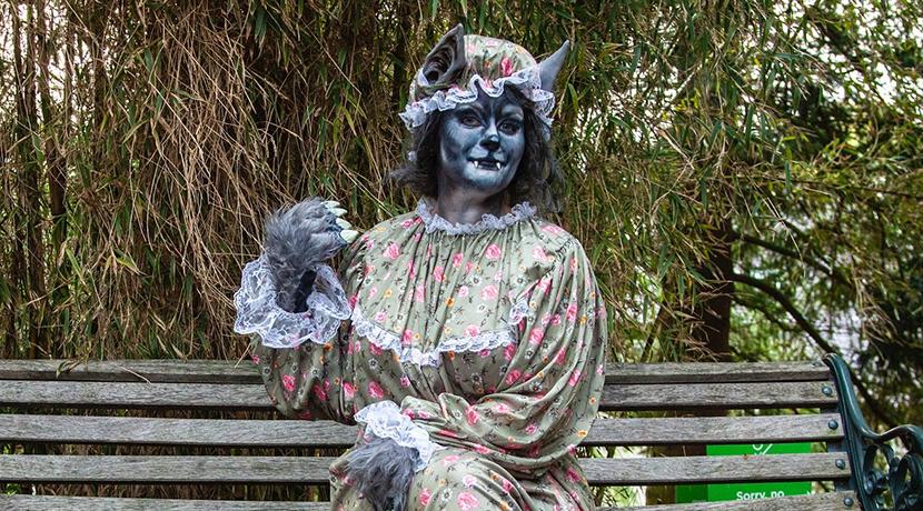 Enjoy Halloween at Birmingham Botanical Gardens this weekend