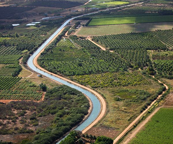 Para recadastramento junto à Celpe, irrigantes do Vale necessitam apresentar licenças ambientais e outorga do uso da água.