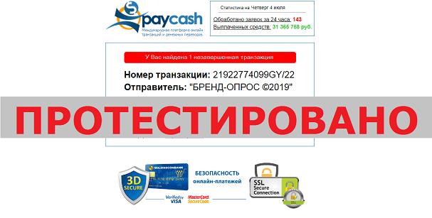 Международная организация онлайн транзакций и денежных переводов, PAYCASH,pays-cash.ru