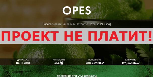 Инвестиционный-проект-OPES-с-opes.site_