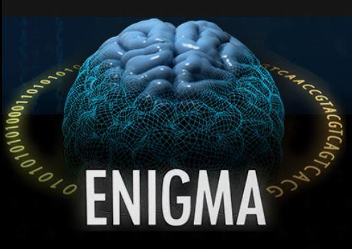 ENIGMA-PD-Vasc