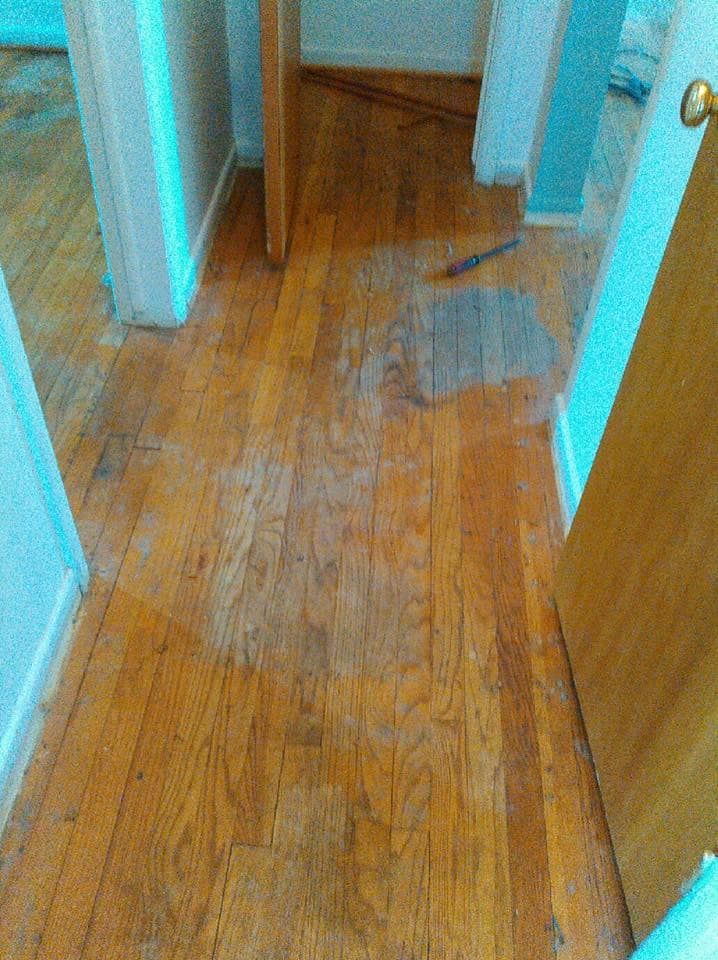 Image showing a hallway, closet and entryway into a room with damaged and discolored hardwood floors
