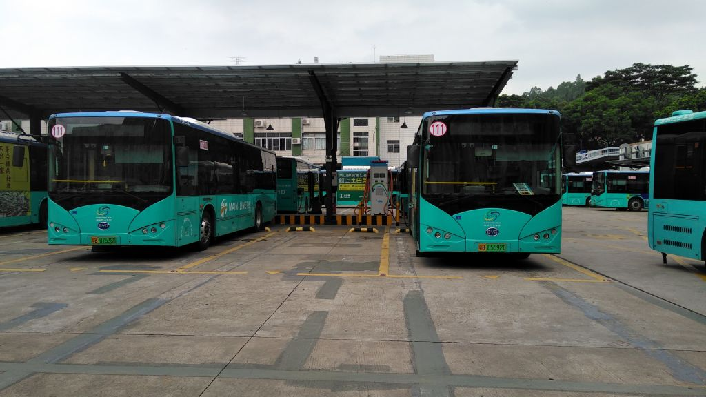 How Did Shenzhen, China Build World's Largest Electric Bus Fleet? - Automark