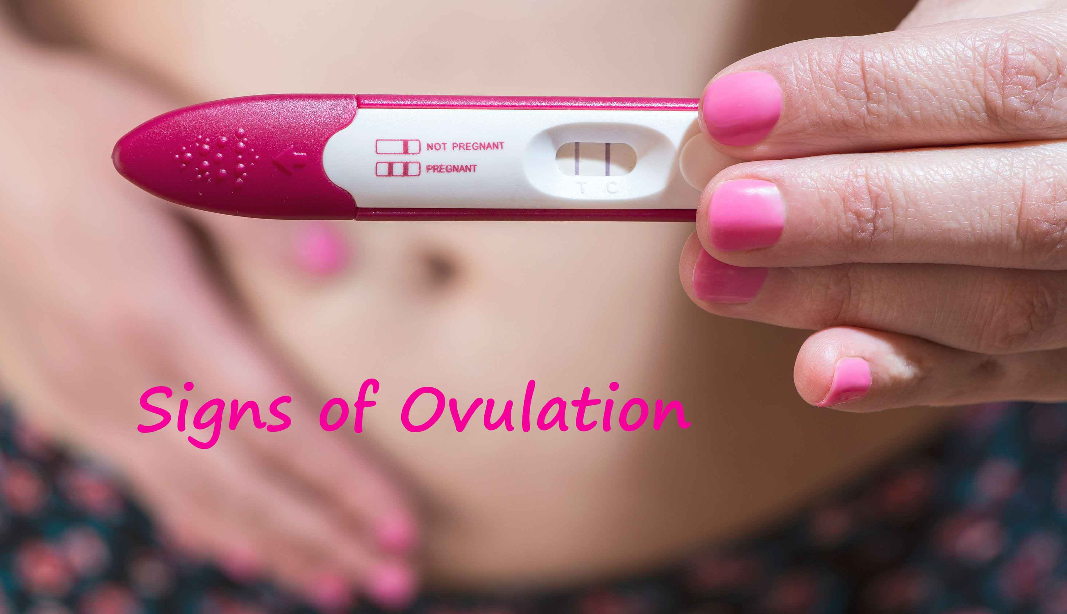 Signs of Ovulation | Symptoms Of Ovulation | Signs & Symptoms Of Ovulation