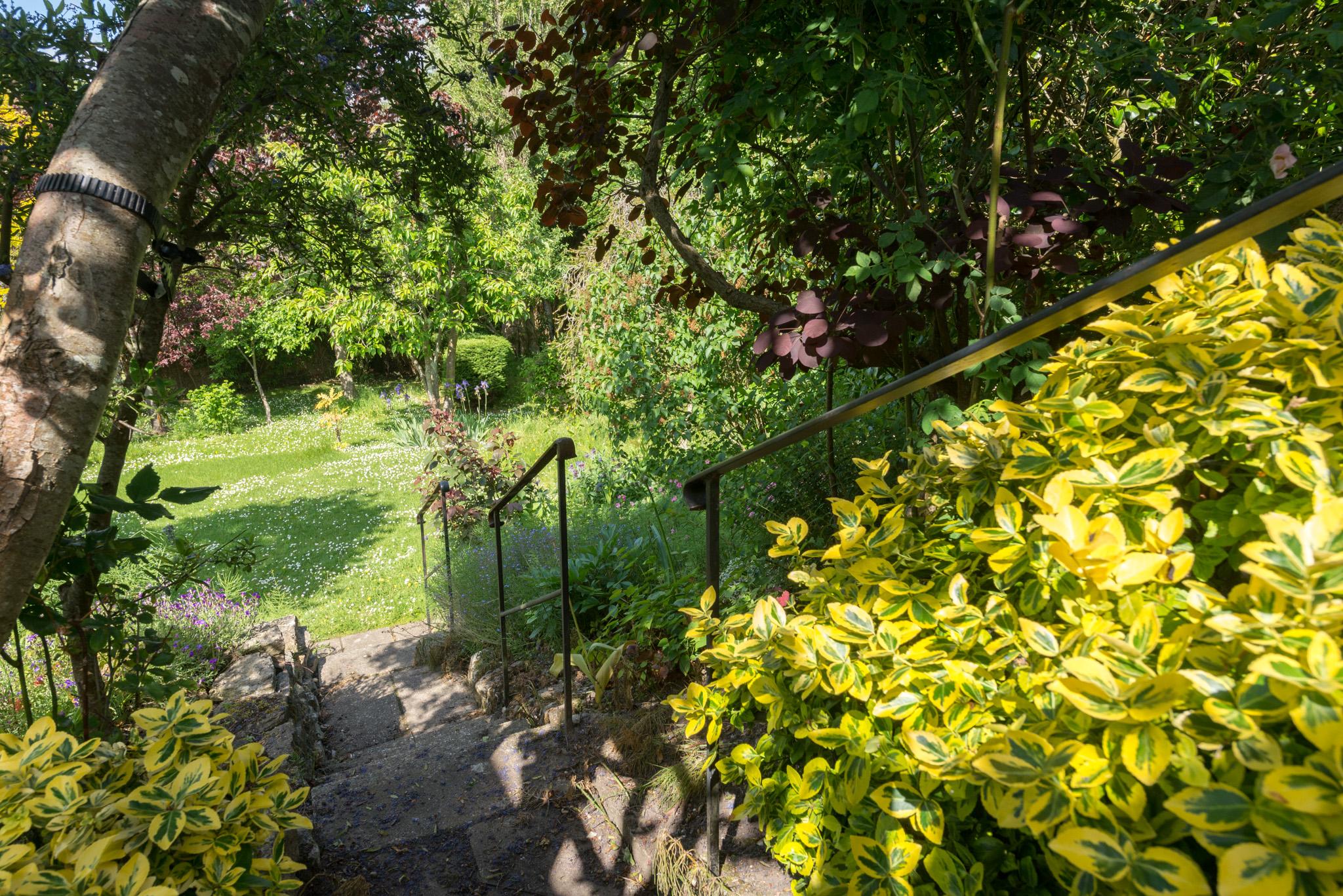 Garden - steps to lawn