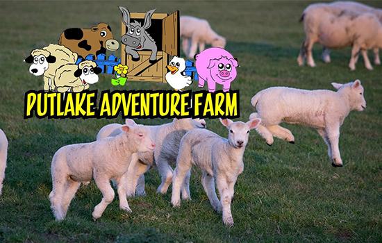 Putlake Adventure Farm