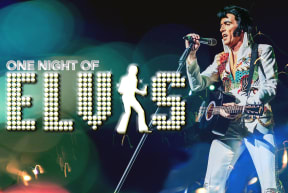 One Night of Elvis - Lee 'Memphis' King at Sunderland Empire
