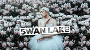 Birmingham Royal Ballet - Swan Lake at Sunderland Empire