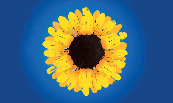 Calendar Girls - The Musical at New Wimbledon Theatre
