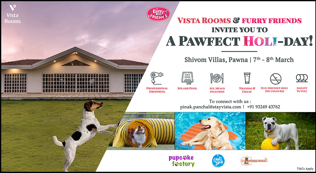 A Pawfect Holi-day by VISTA ROOMS