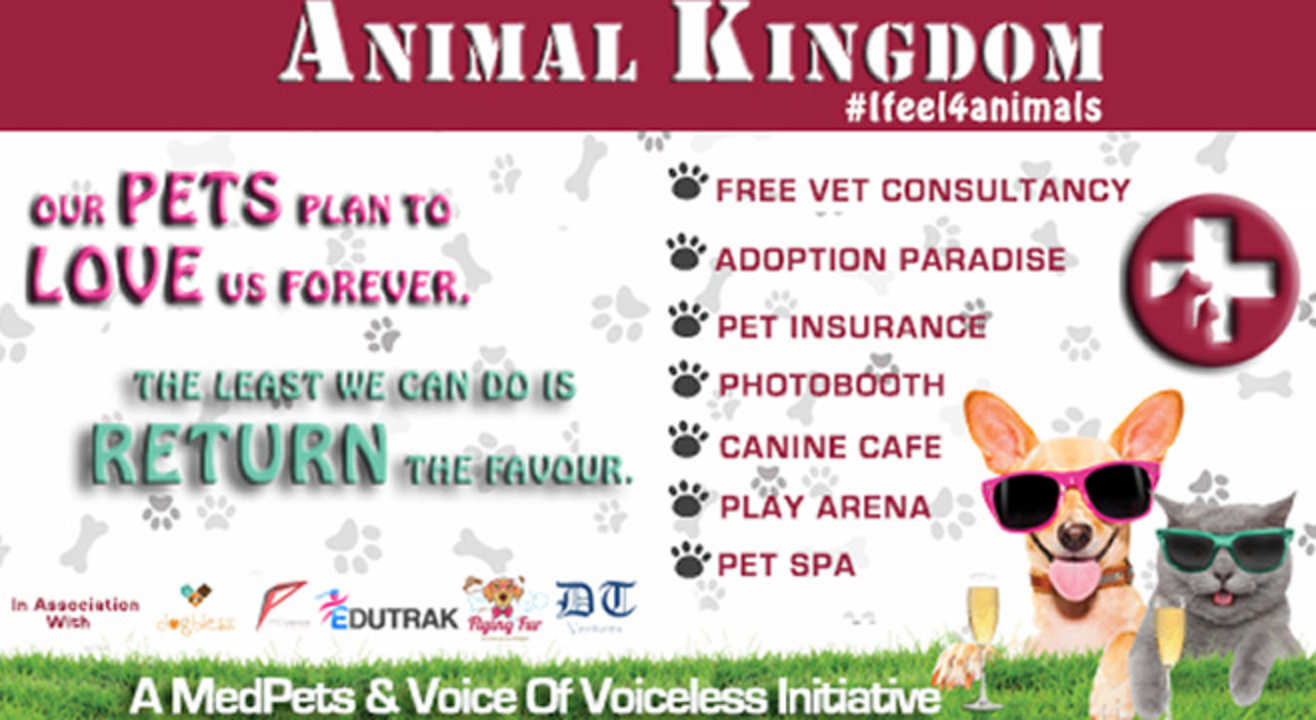 Animal Kingdom - A Pet Festival