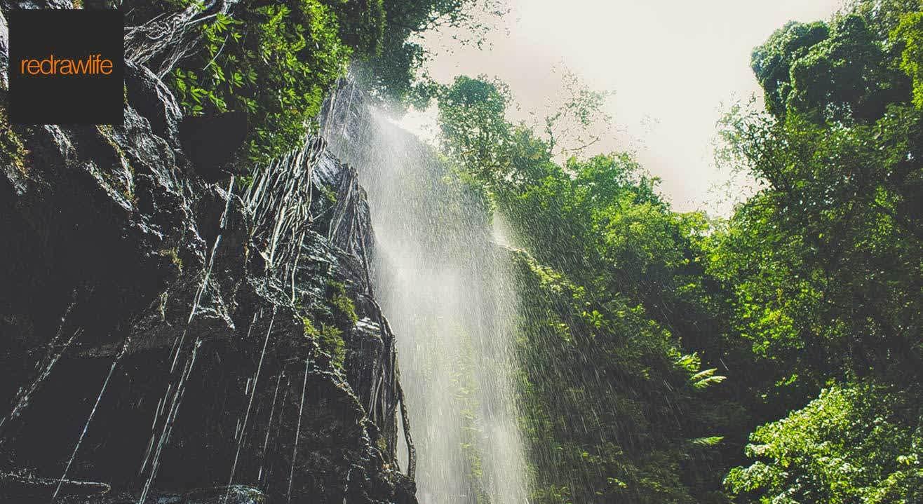 Monsoon Trek To Kodachadri
