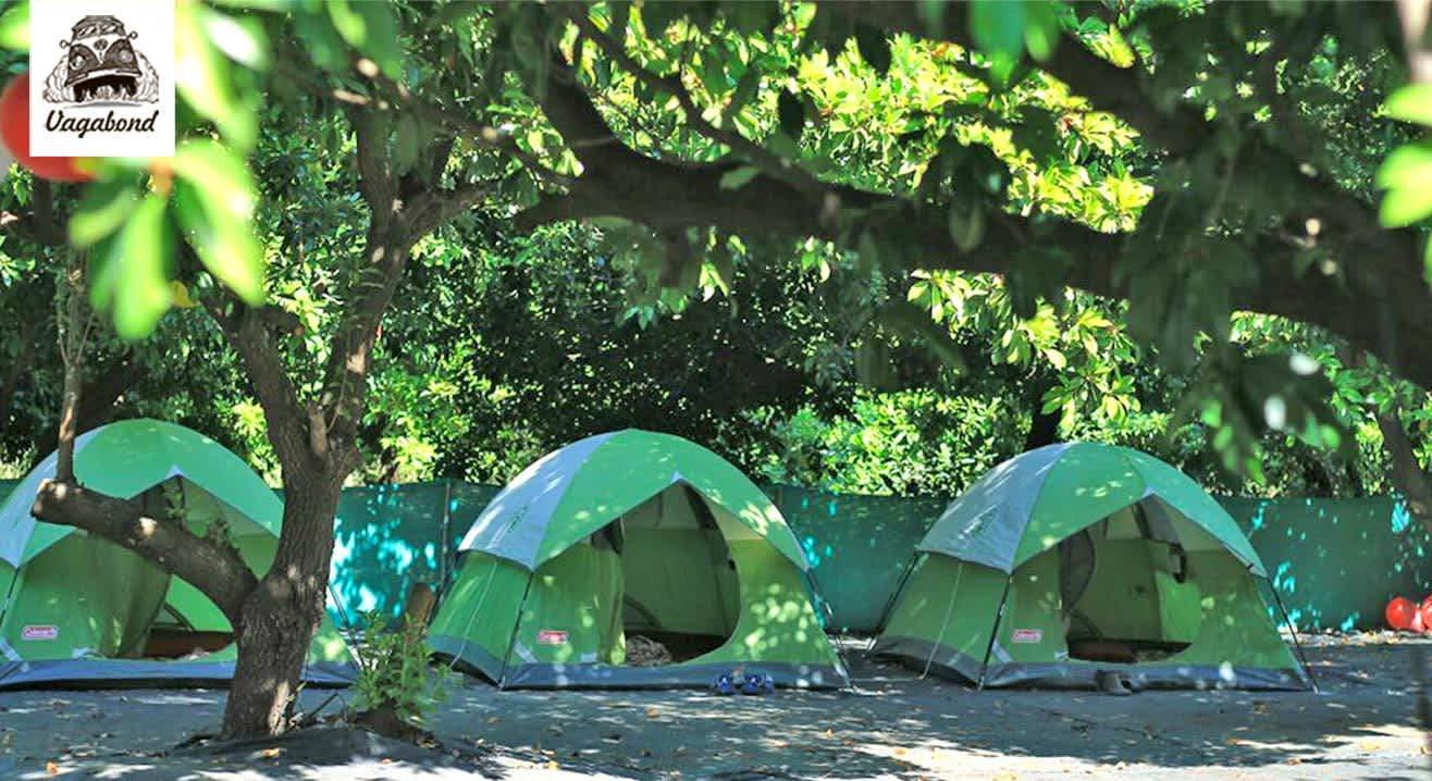Monsoon Camping at Dahanu
