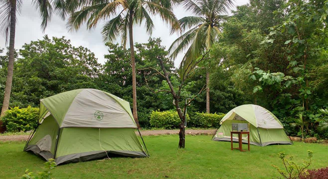 Farm Camping at Dahanu Chiku Farm