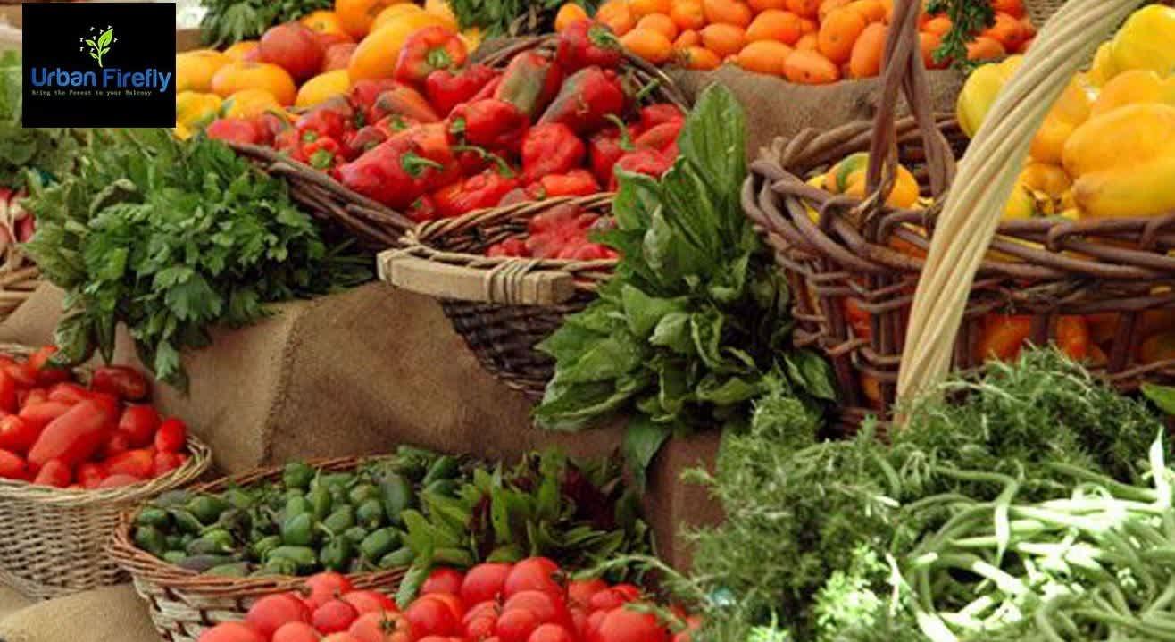 Organic Kitchen Gardening Workshop by Urban Firefly