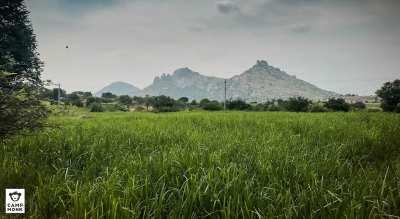 Dial Down - New Year Camping at Devarayanadurga