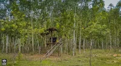 Dial Down - New Year Camping at Nachikuppam
