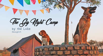 The Gig Night Camp