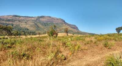 Kotebetta Coorg Trek with Plan The Unplanned