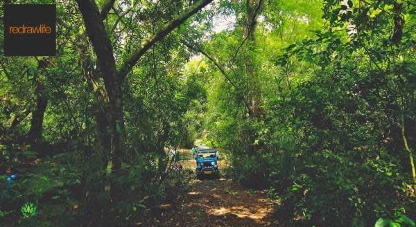 Safari And Trekking At Konni
