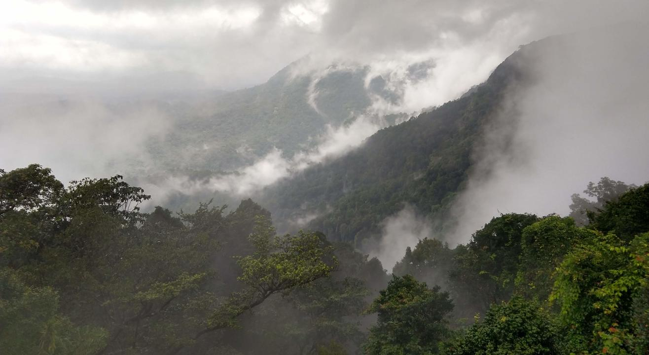 Experience Monsoon at Agumbe